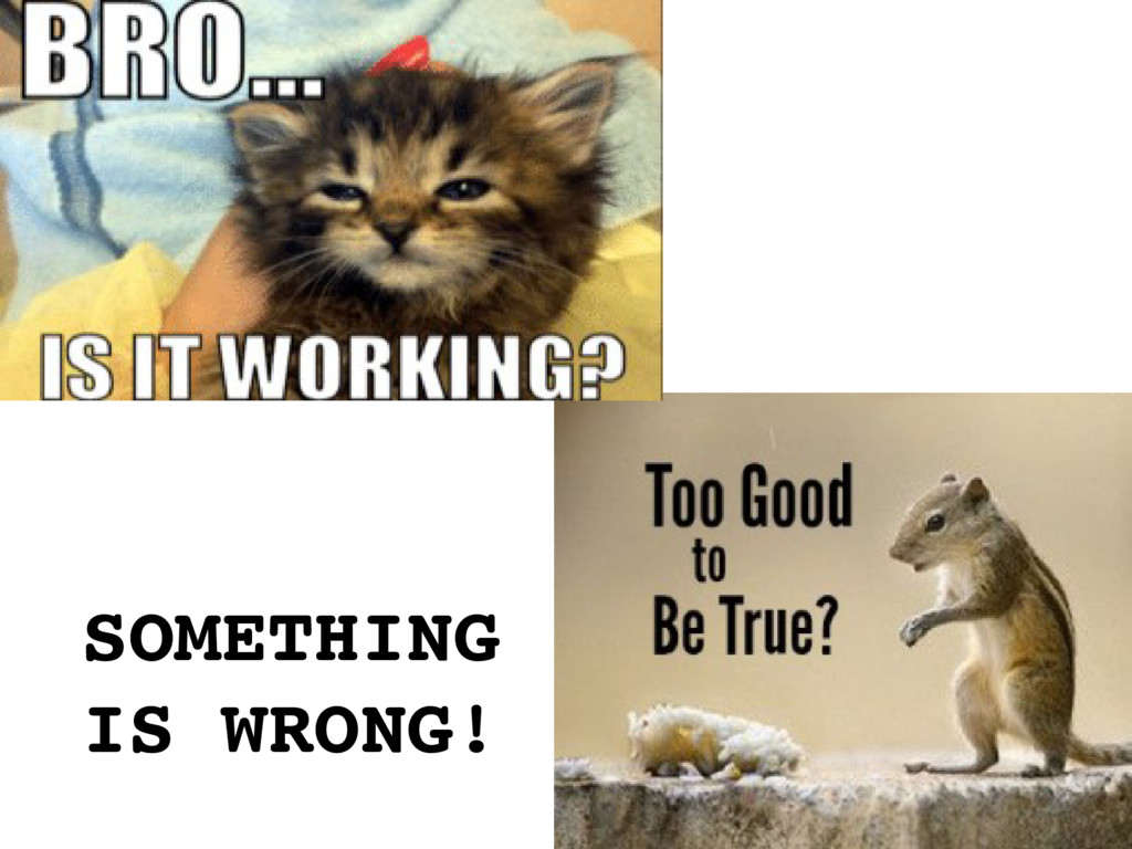SOMETHING IS WRONG!