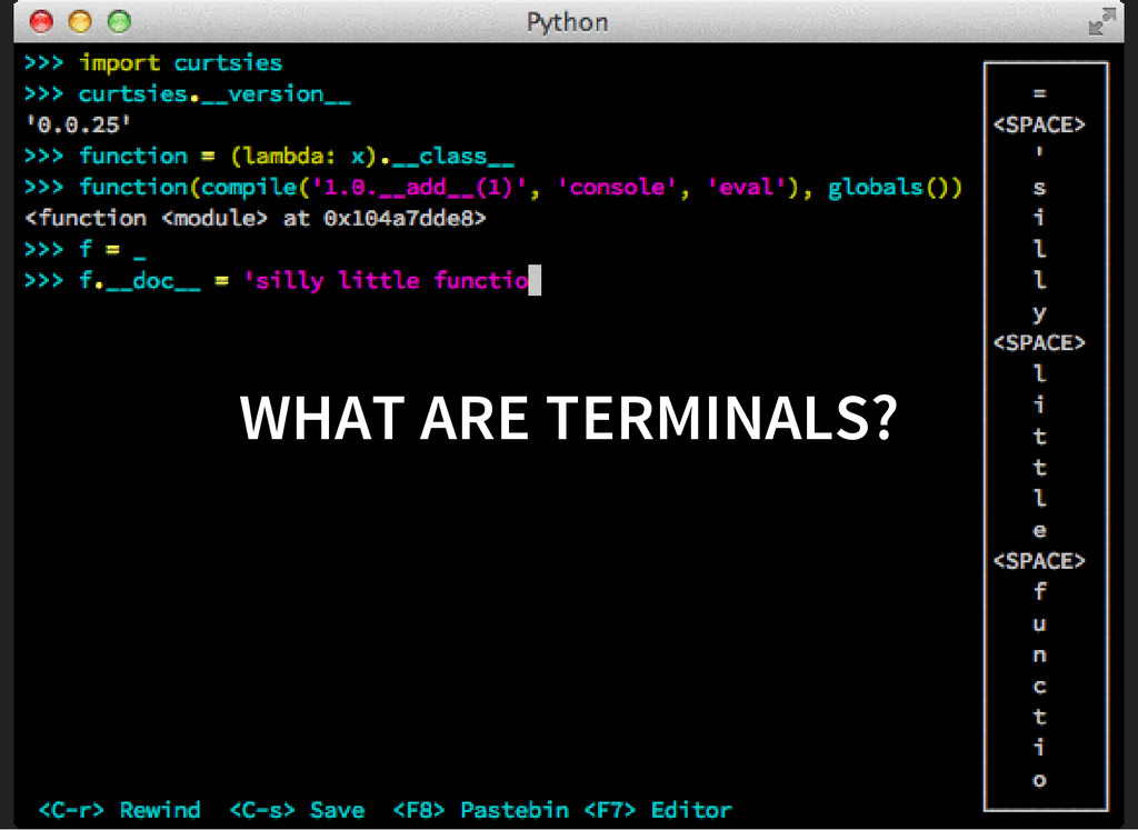 WHAT ARE TERMINALS?