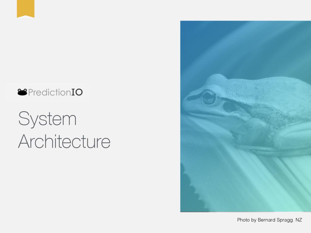 Photo by Bernard Spragg. NZ System Architecture