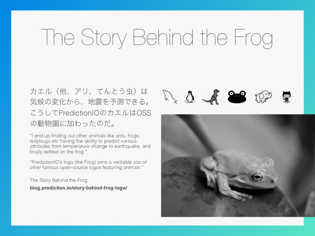 The Story Behind the Frog ΧΤϧʢଞɺΞϦɺͯΜͱ͏ʣ ؾީͷม...