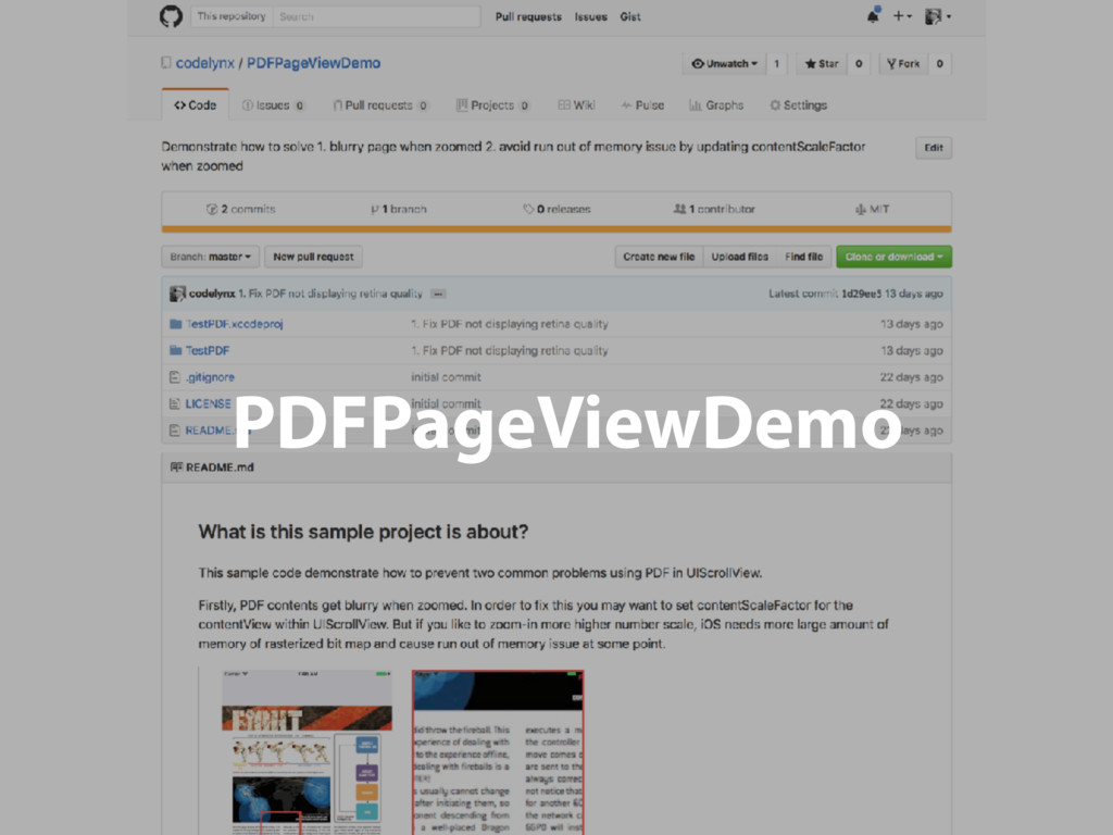 PDFPageViewDemo