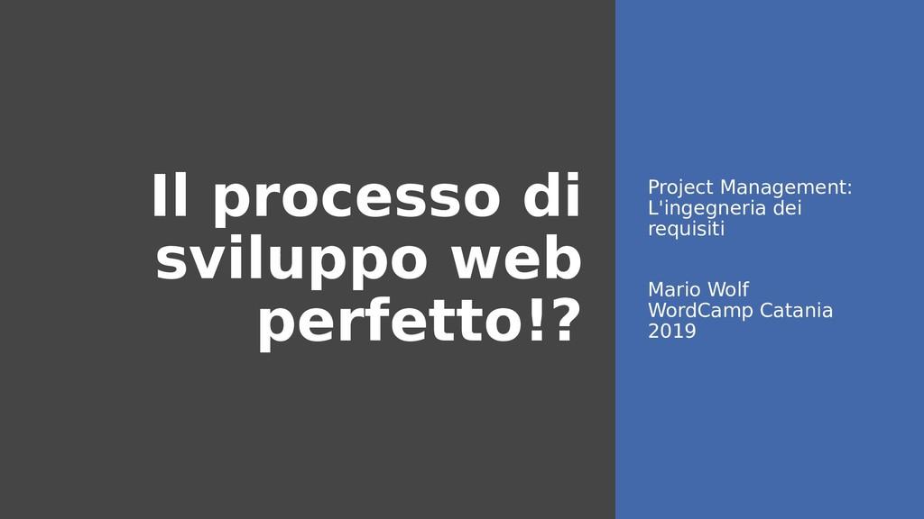 Il processo di sviluppo web perfetto!? Project ...