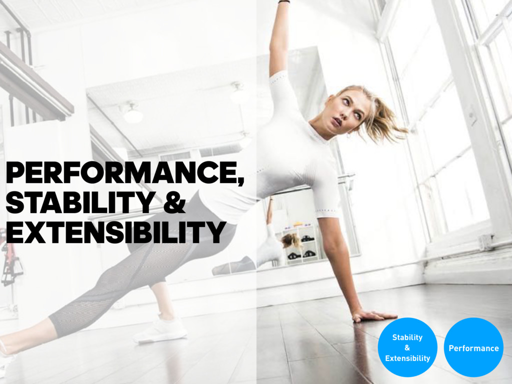 PERFORMANCE, STABILITY & EXTENSIBILITY Performa...