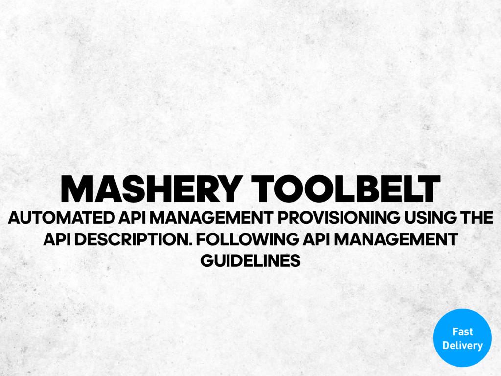 MASHERY TOOLBELT Fast Delivery AUTOMATEDAPI MA...