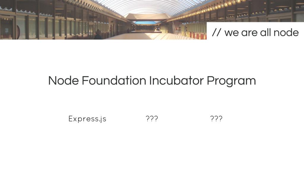 Node Foundation Incubator Program we are all no...