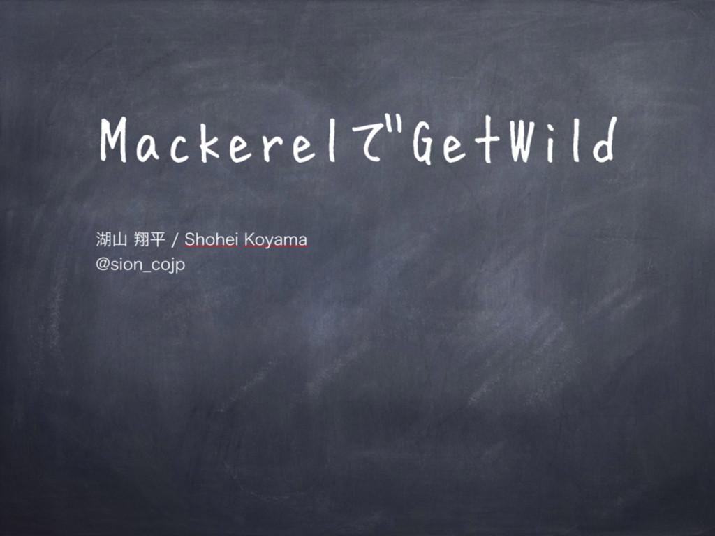 MackerelでGetWild ބᠳฏ4IPIFJ,PZBNB !TJPO@D...
