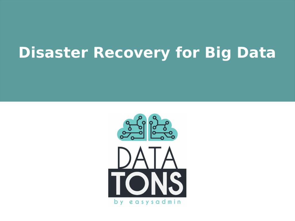 Disaster Recovery for Big Data