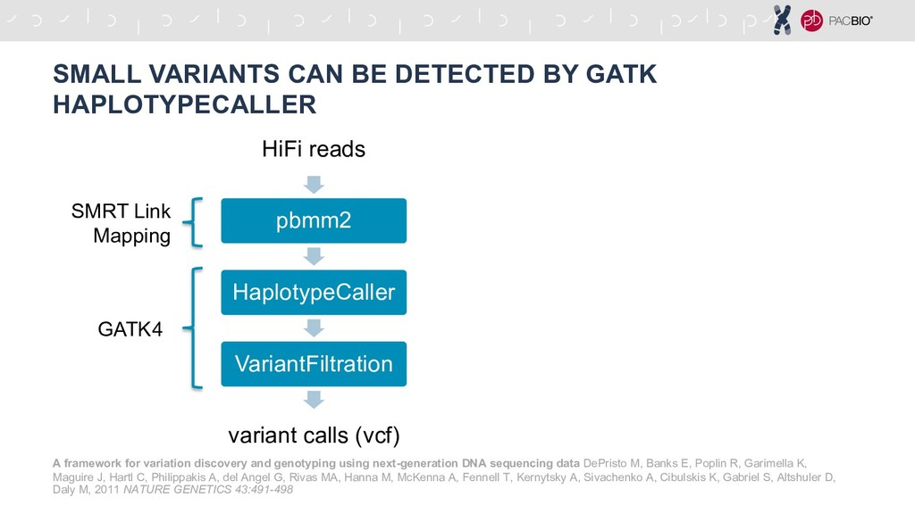 SMALL VARIANTS CAN BE DETECTED BY GATK HAPLOTYP...