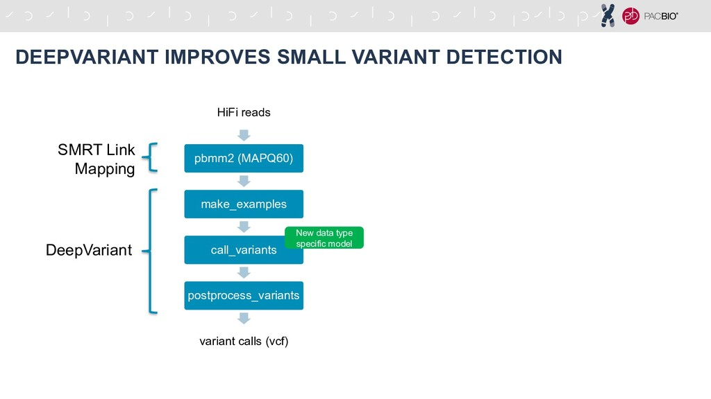 HiFi reads pbmm2 (MAPQ60) make_examples call_va...
