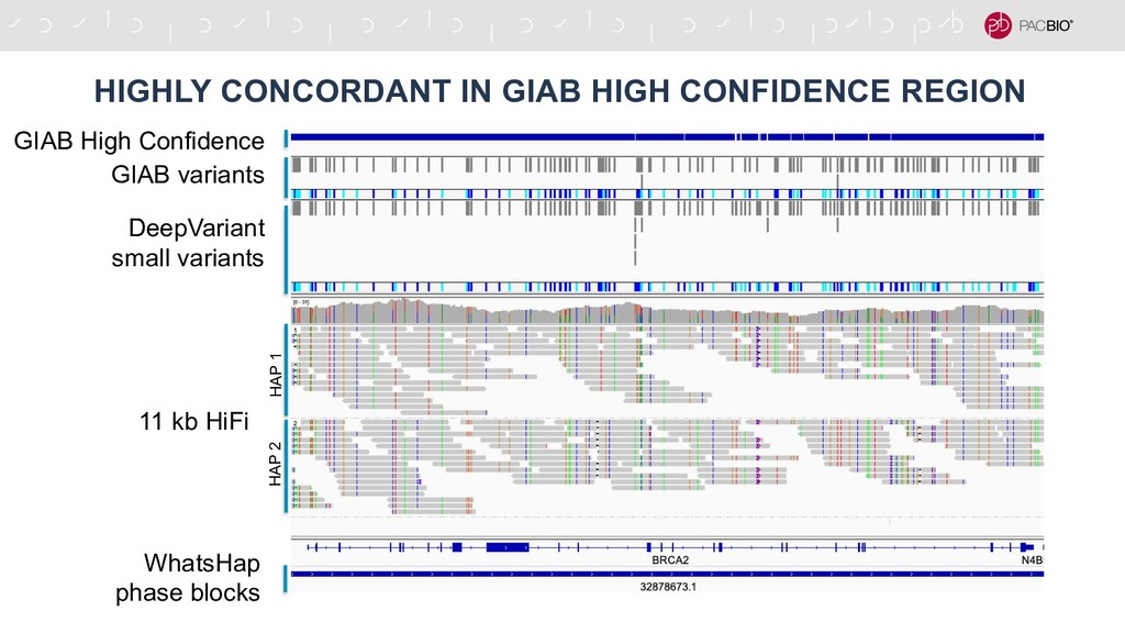 HIGHLY CONCORDANT IN GIAB HIGH CONFIDENCE REGIO...
