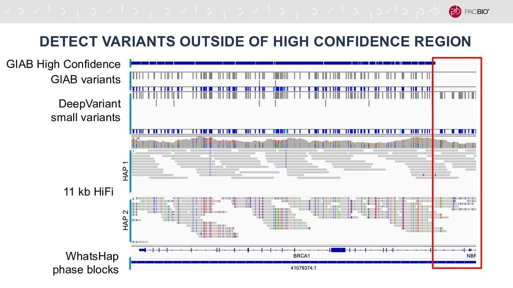 DETECT VARIANTS OUTSIDE OF HIGH CONFIDENCE REGI...