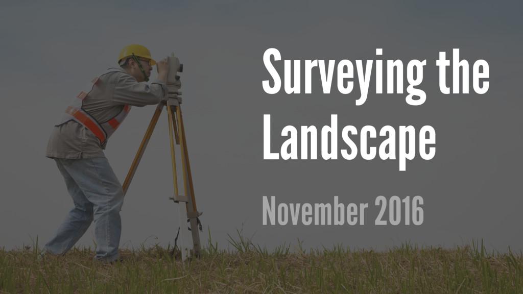 Surveying the Landscape November 2016