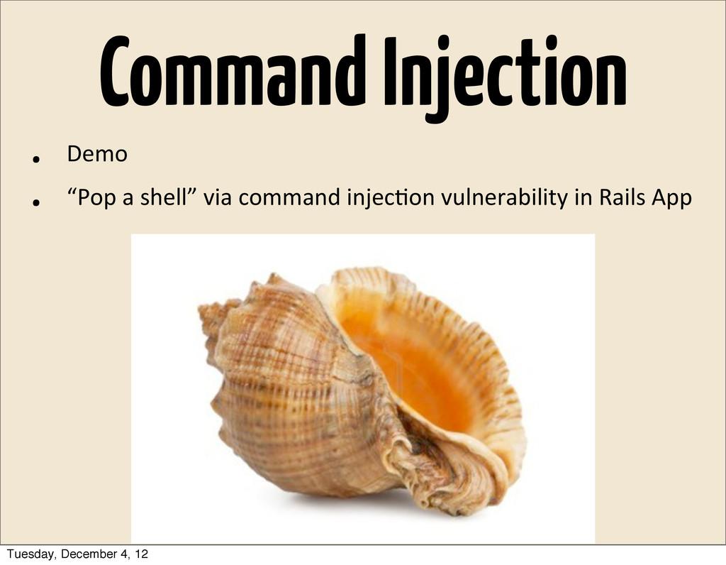 "Command Injection • Demo • ""Pop a shell"" via..."