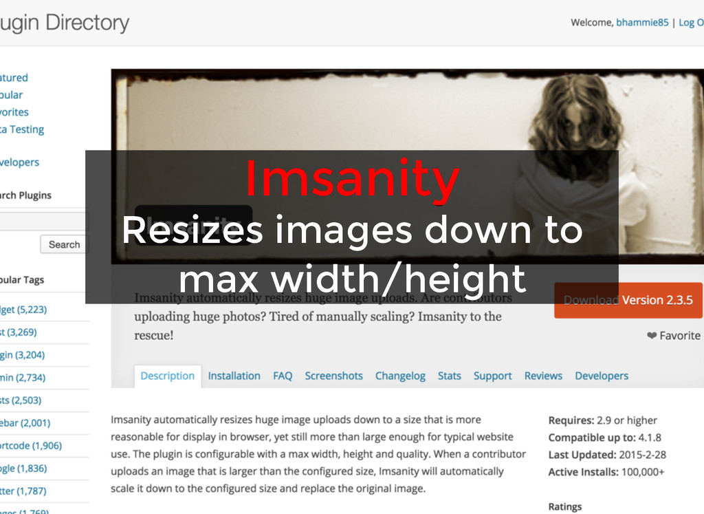 Imsanity Imsanity Resizes images down to Resize...