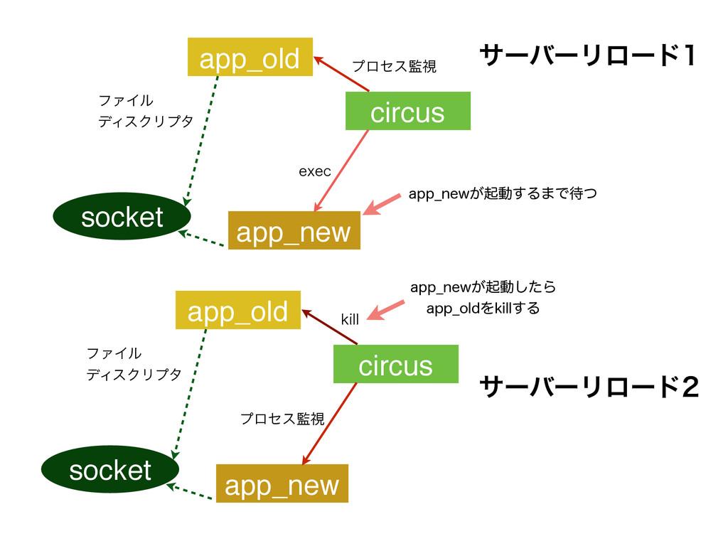circus socket ϑΝΠϧ σΟεΫϦϓλ app_old FYFD app_ne...