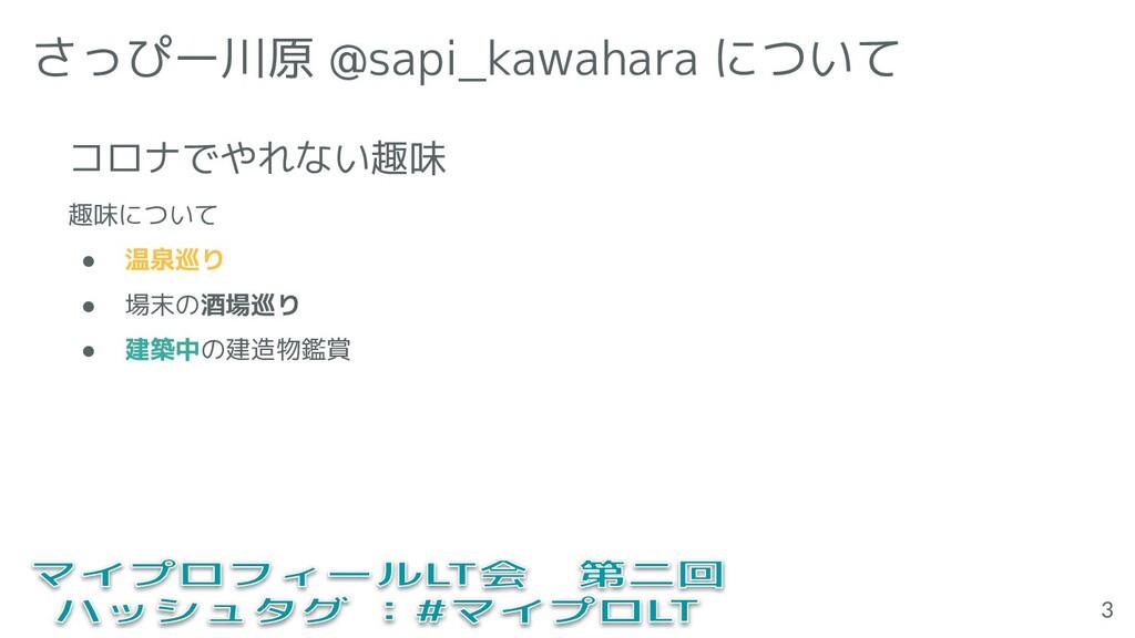 さっぴー川原 @sapi_kawahara について 趣味について ● 温泉巡り ● 場末の酒...