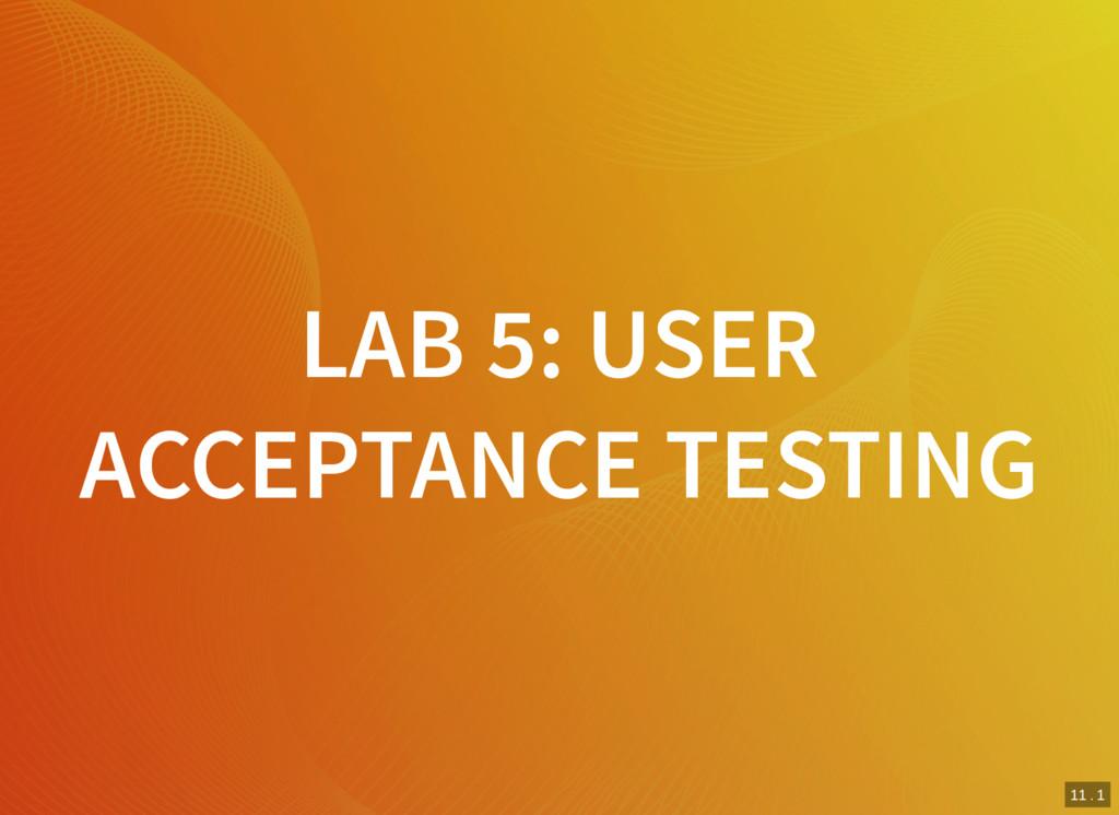 11 . 1 LAB 5: USER ACCEPTANCE TESTING