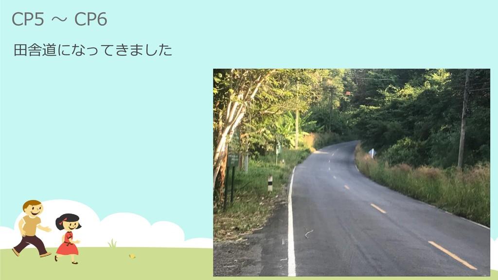 CP5 ~ CP6 田舎道になってきました