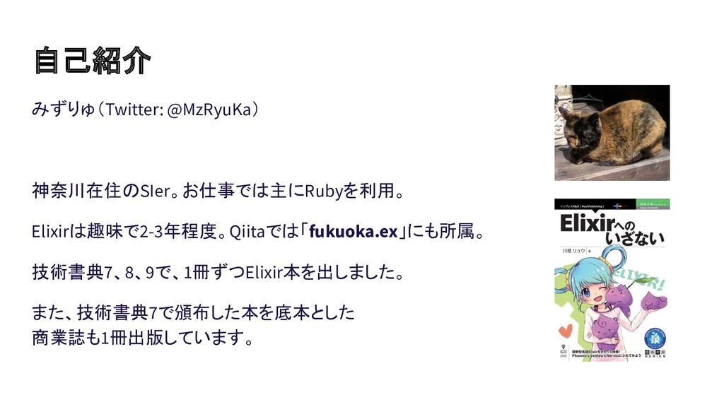 自己紹介 みずりゅ(Twitter: @MzRyuKa)  神奈川在住のSIer。お仕事では主...