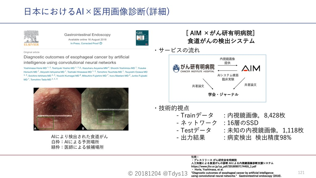 "© 20181204 @Tdys13 121 ⽇本におけるAI×医⽤画像診断(詳細) <""*..."