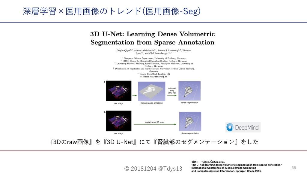 © 20181204 @Tdys13 66 『3Dのraw画像』を『3D U-Net』にて『腎...