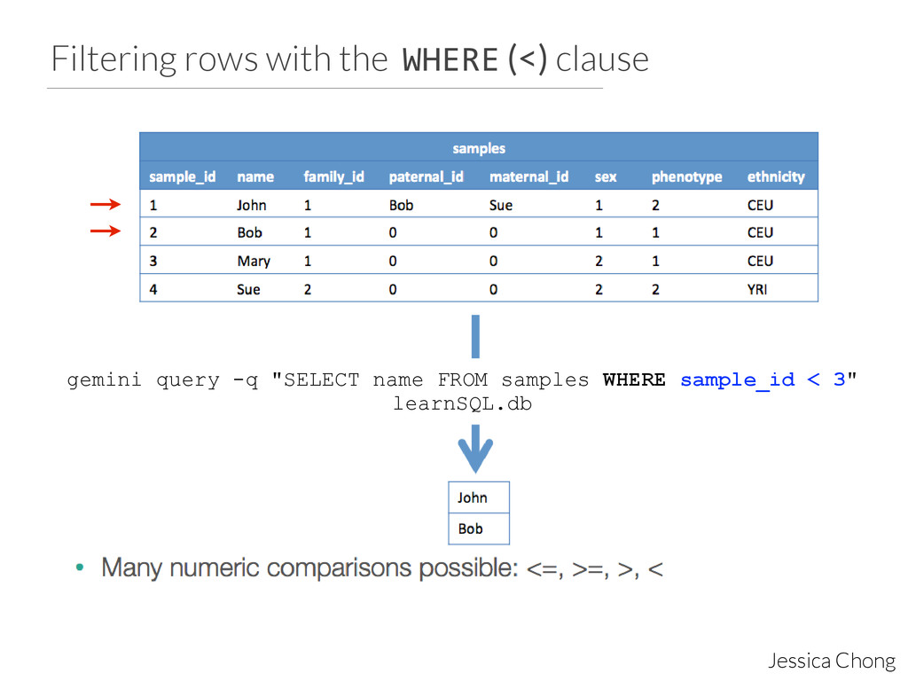 Filtering rows with the WHERE (<) clause Jessic...