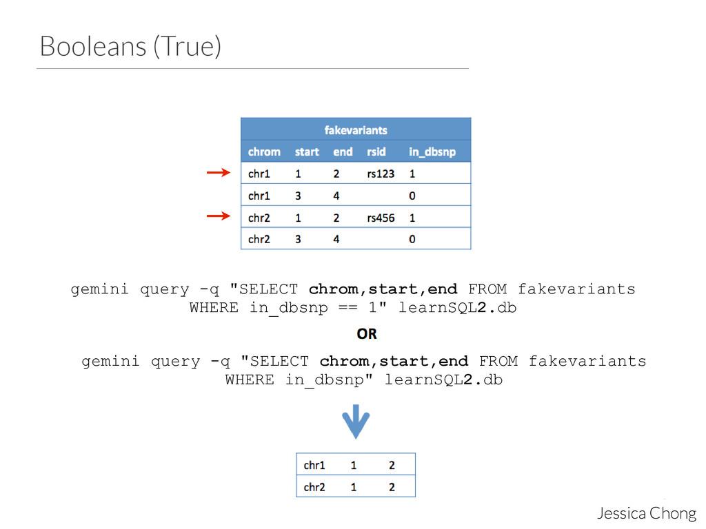"Booleans (True) Jessica Chong gemini query -q ""..."