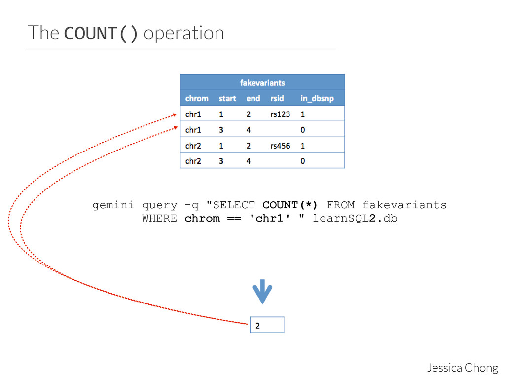 The COUNT() operation Jessica Chong gemini quer...