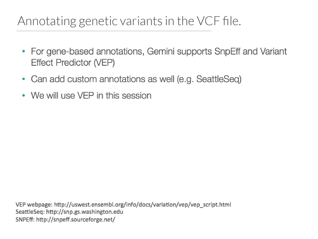 Annotating genetic variants in the VCF file.