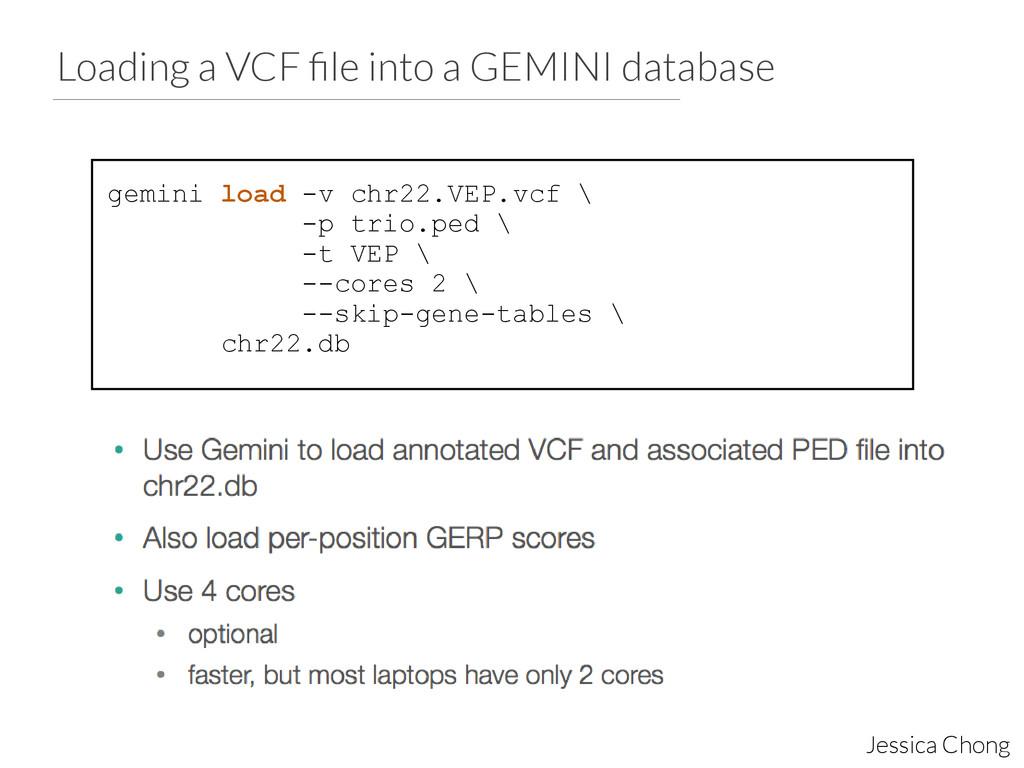 Loading a VCF file into a GEMINI database Jessic...