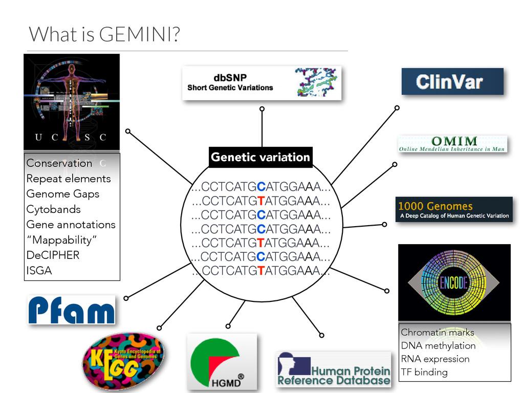 What is GEMINI? ...CCTCATGCATGGAAA... Genetic v...
