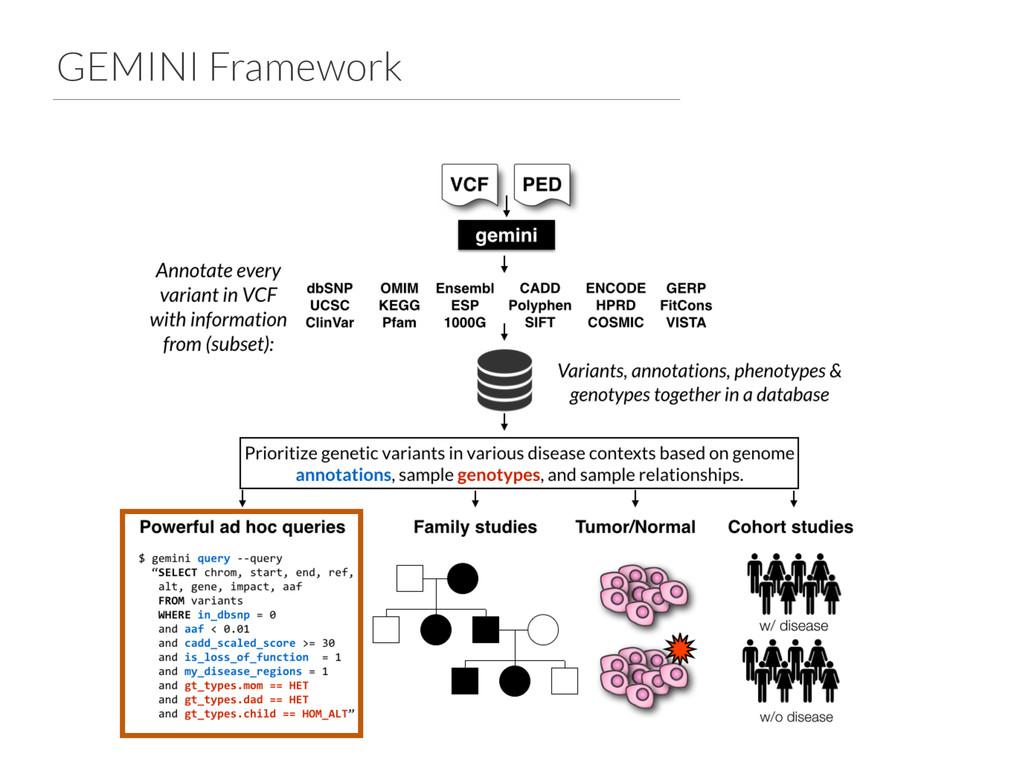GEMINI Framework