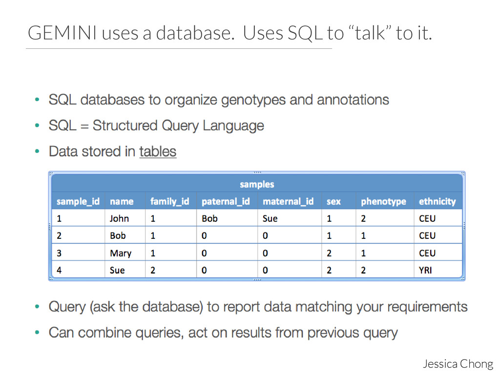 """GEMINI uses a database. Uses SQL to """"talk"""" to i..."""