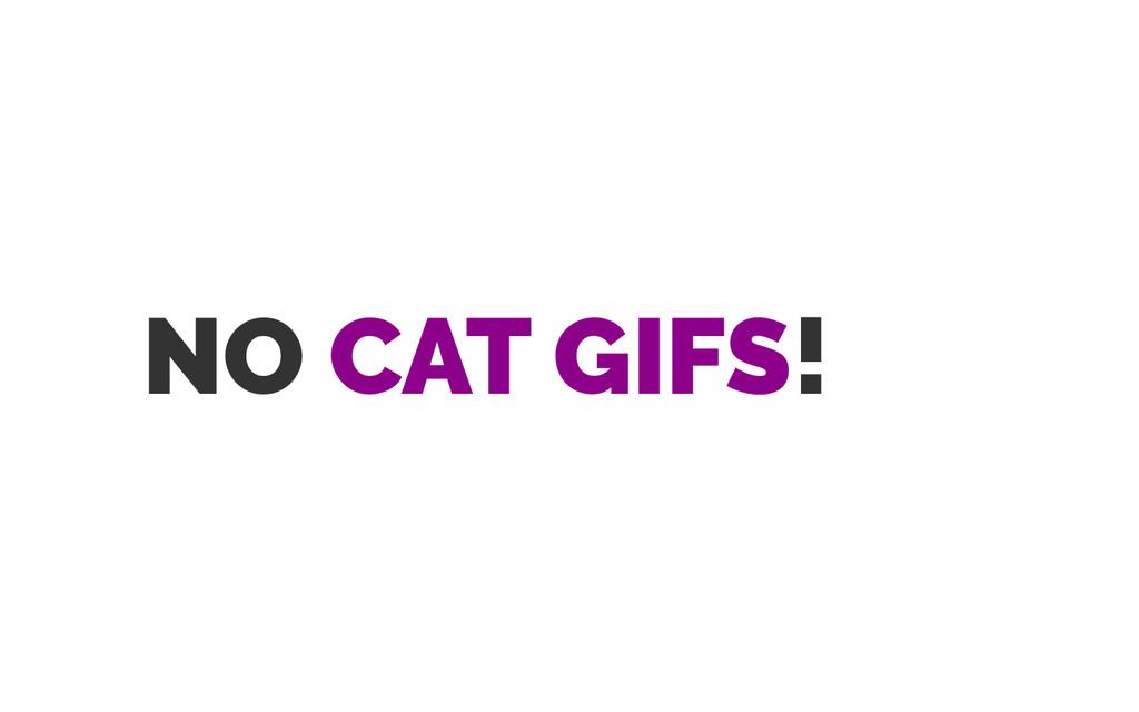 NO CAT GIFS!