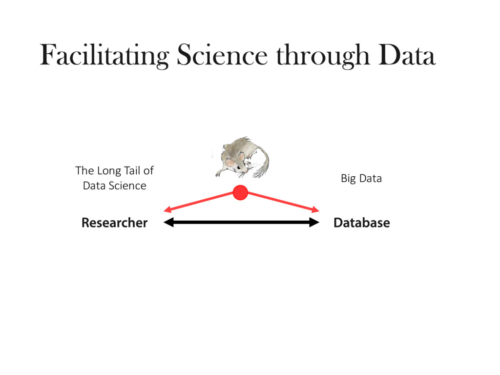 The Long Tail of Data Science Big Data