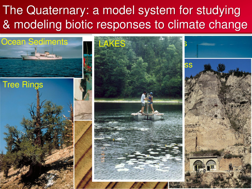 The Quaternary: a model system for studying & m...