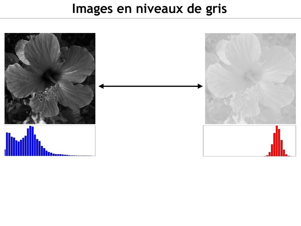 Images en niveaux de gris