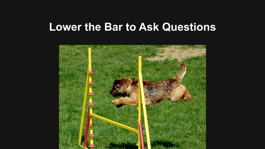 Lower the Bar to Ask Questions