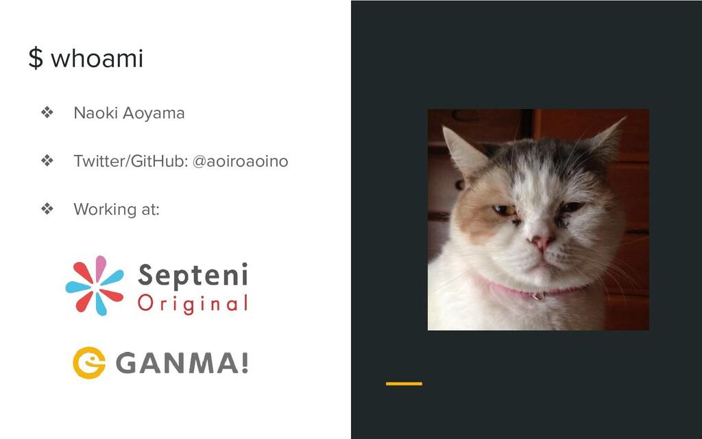 ❖ Naoki Aoyama ❖ Twitter/GitHub: @aoiroaoino ❖ ...