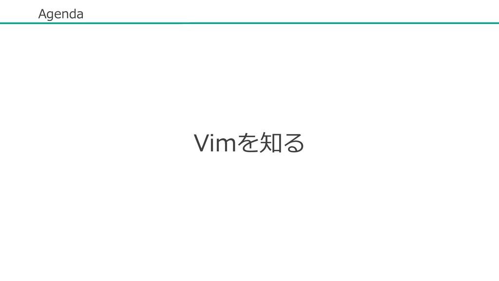 Agenda Vimを知る