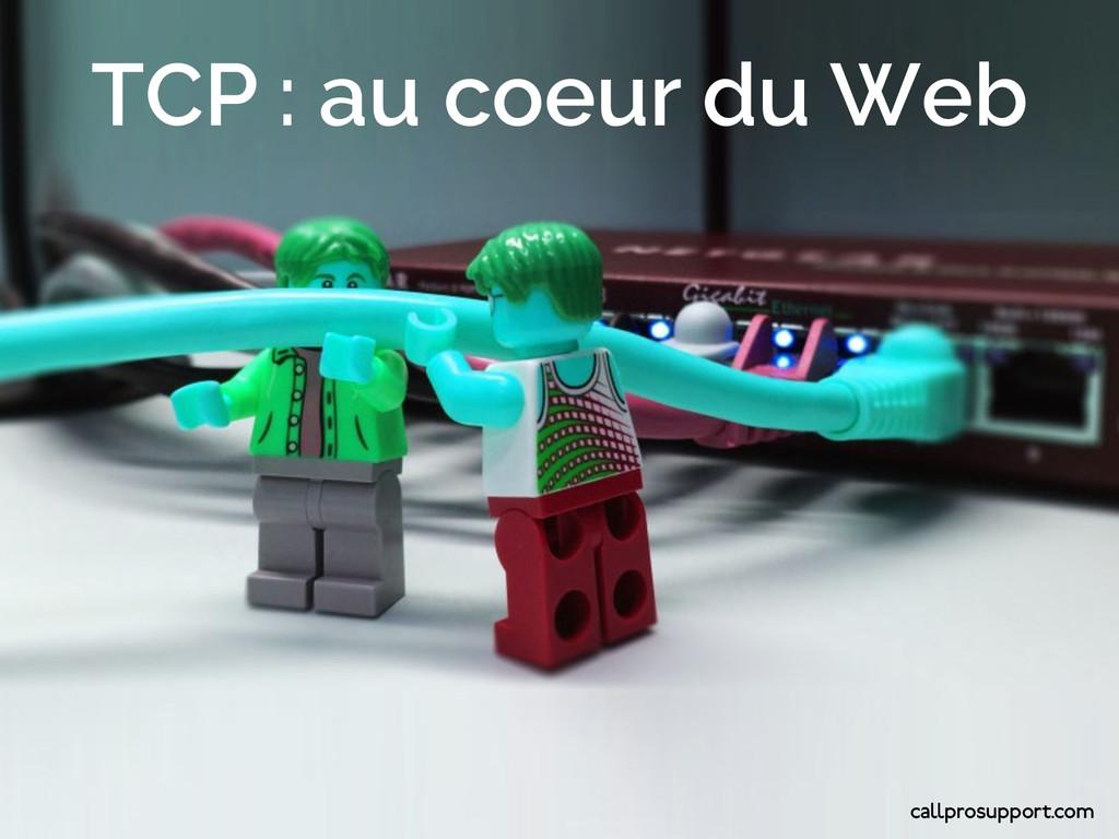 Agir TCP : au coeur du Web callprosupport.com