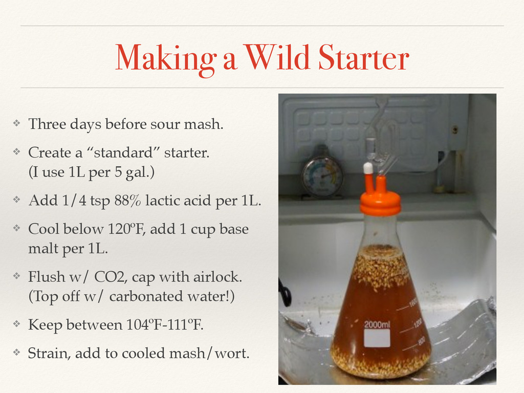 Making a Wild Starter ❖ Three days before sour ...
