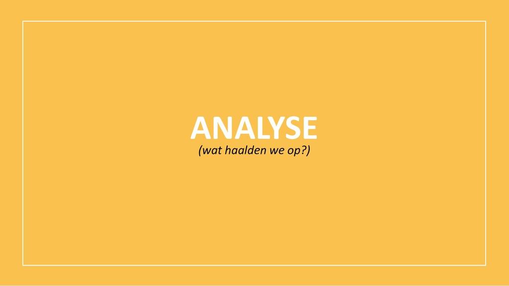 ANALYSE (wat haalden we op?)