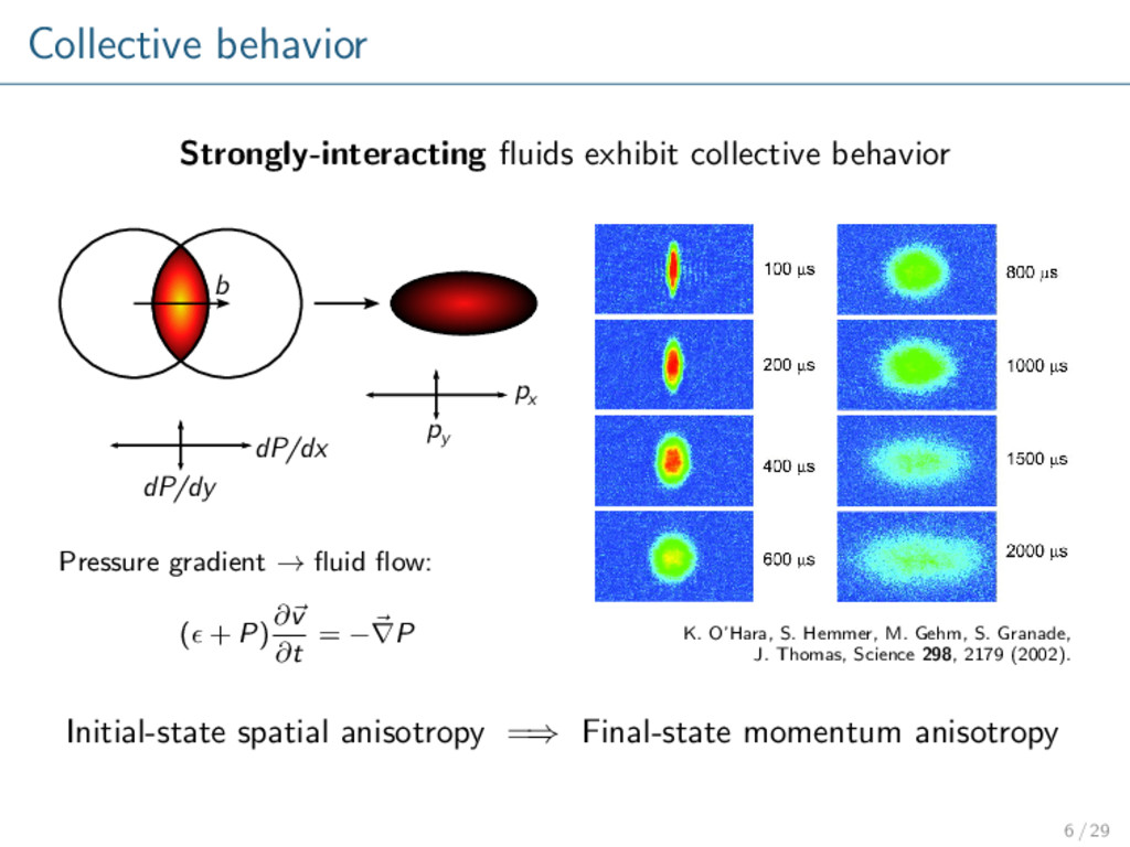 Collective behavior Strongly-interacting fluids ...