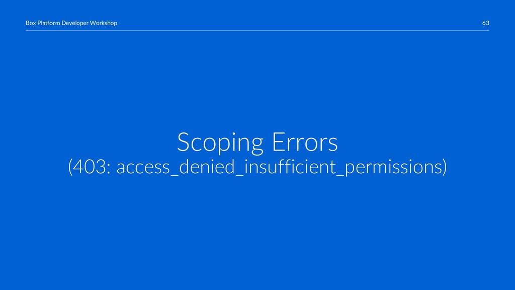 63 Box Platform Developer Workshop Scoping Erro...