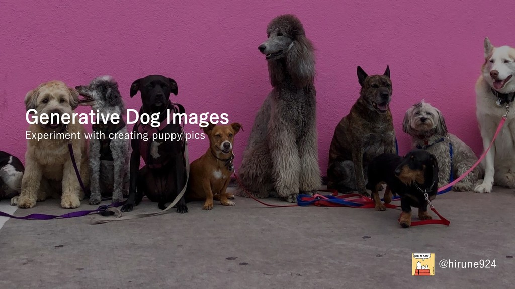 Generative Dog Images Experiment with creating ...