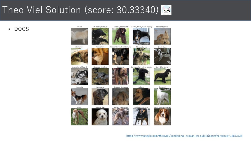 • DOGS Theo Viel Solution (score: 30.33340) htt...