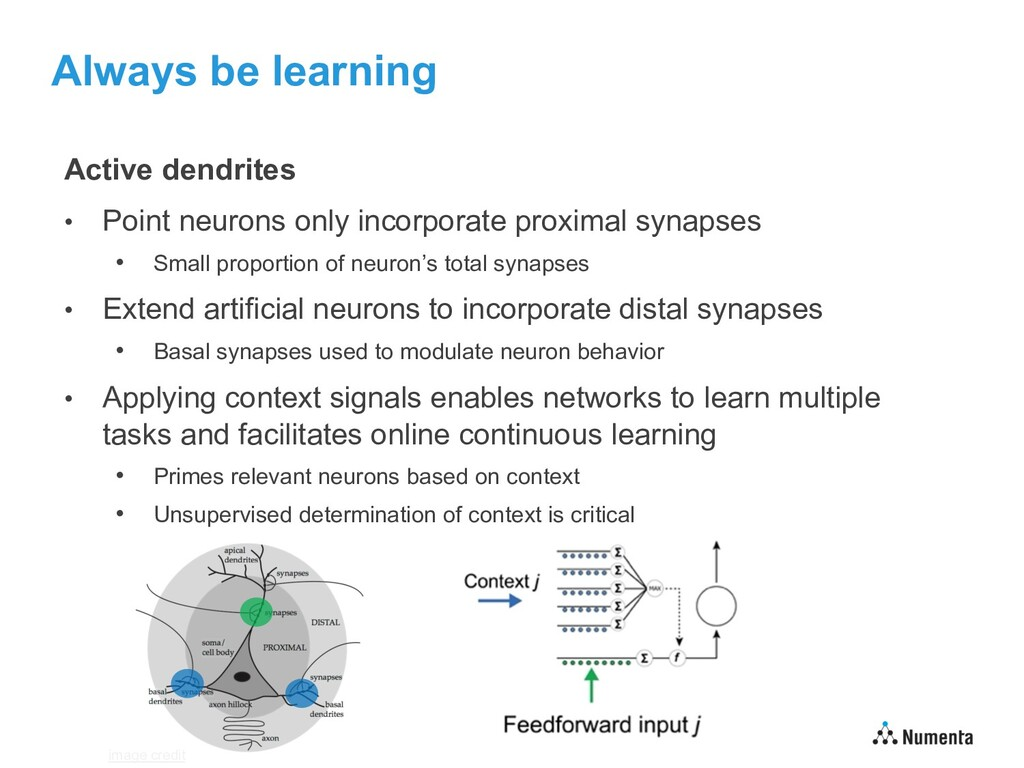 Always be learning Active dendrites • Point neu...