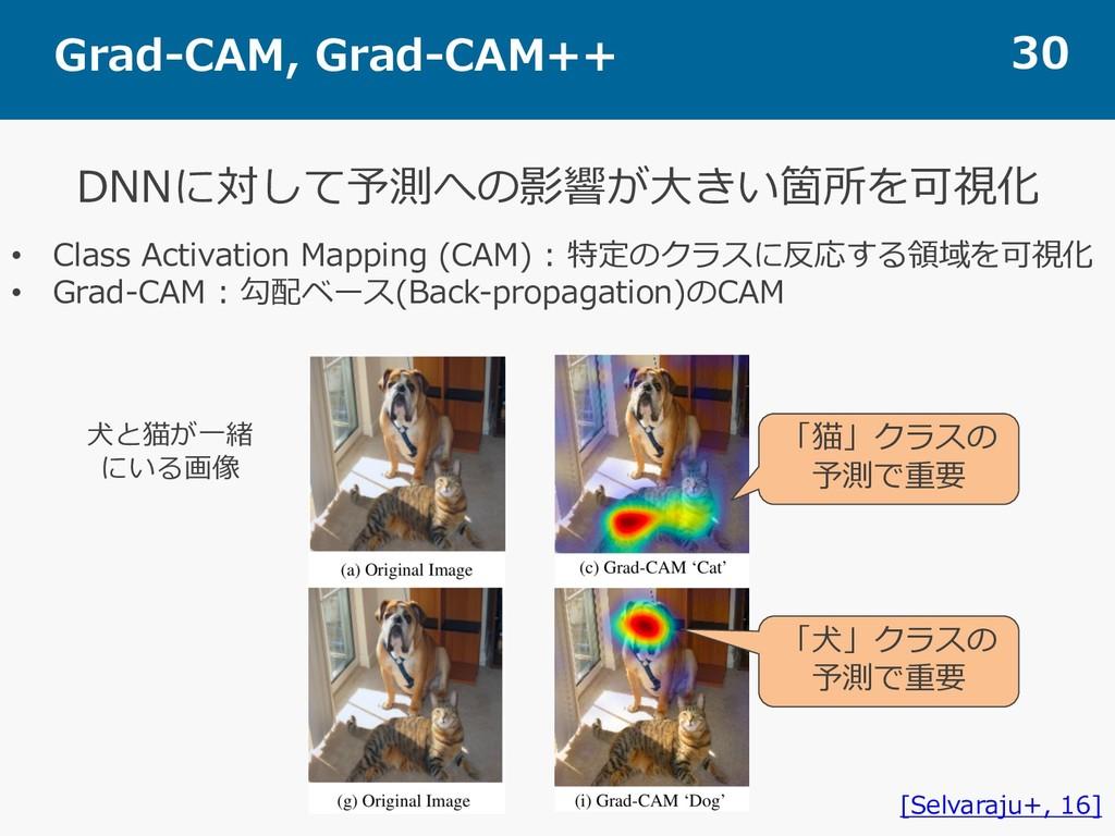 Grad-CAM, Grad-CAM++ 30 DNNに対して予測への影響が⼤きい箇所を可視化...