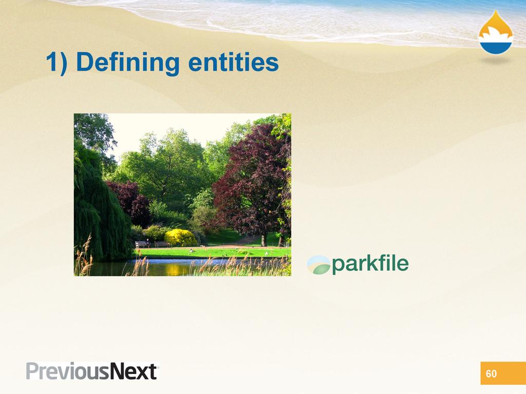1) Defining entities 60